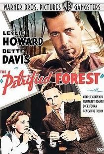 Assistir A Floresta Petrificada Online Grátis Dublado Legendado (Full HD, 720p, 1080p) | Archie Mayo | 1936