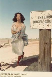 Assistir A Fuga do Condado de Bogen Online Grátis Dublado Legendado (Full HD, 720p, 1080p) | Steven Hilliard Stern | 1977