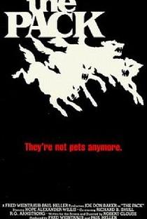 Assistir A Longa Noite de Terror Online Grátis Dublado Legendado (Full HD, 720p, 1080p) | Robert Clouse | 1977