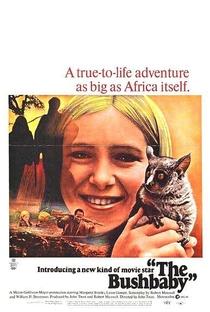 Assistir A Menina das Selvas Online Grátis Dublado Legendado (Full HD, 720p, 1080p) | John Trent | 1969