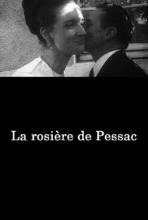 Assistir A Virgem de Pessac Online Grátis Dublado Legendado (Full HD, 720p, 1080p) | Jean Eustache | 1968