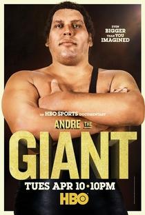 Assistir André o Gigante Online Grátis Dublado Legendado (Full HD, 720p, 1080p) | Jason Hehir | 2018
