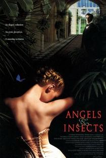 Assistir Anjos e Insetos Online Grátis Dublado Legendado (Full HD, 720p, 1080p) | Philip Haas | 1995