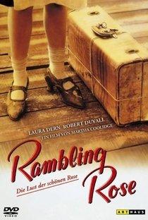 Assistir As Noites de Rose Online Grátis Dublado Legendado (Full HD, 720p, 1080p) | Martha Coolidge | 1991