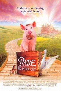 Assistir Babe, O Porquinho Atrapalhado na Cidade Online Grátis Dublado Legendado (Full HD, 720p, 1080p) | George Miller (II) | 1998