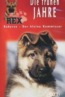 Assistir Baby Rex - Der kleine Kommissar Online Grátis Dublado Legendado (Full HD, 720p, 1080p) | Oliver Hirschbiegel | 1997