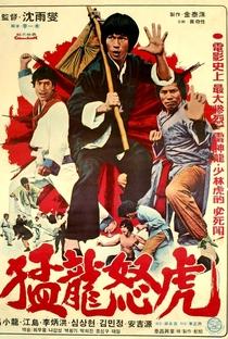 Assistir Bruce and the Dragon Fist Online Grátis Dublado Legendado (Full HD, 720p, 1080p)   Ai-Wei Chen
