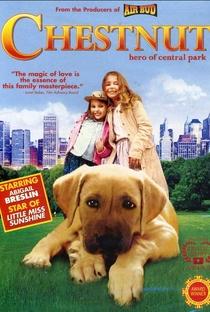 Assistir Chestnut: O Herói do Central Park Online Grátis Dublado Legendado (Full HD, 720p, 1080p) | Robert Vince | 2004