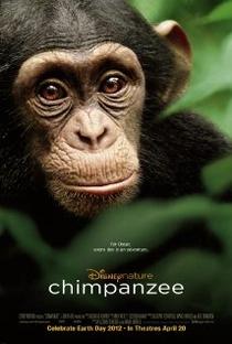 Assistir Chimpanzé Online Grátis Dublado Legendado (Full HD, 720p, 1080p) | Alastair Fothergill