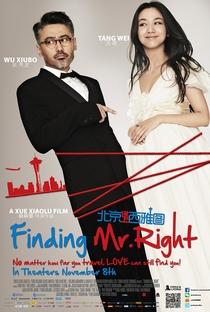 Assistir Como Encontrar o Homem Ideal Online Grátis Dublado Legendado (Full HD, 720p, 1080p) | Xiao Lu Xue | 2013