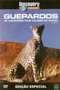 Assistir Discovery Channel: Guepardos - Os Mamiferos Mais Velozes do Mundo Online Grátis Dublado Legendado (Full HD, 720p, 1080p)   Patrick Morris (V)   1994