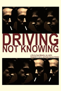 Assistir Driving Not Knowing Online Grátis Dublado Legendado (Full HD, 720p, 1080p) | Benjamin R. Davis