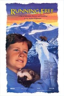 Assistir Férias no Alaska Online Grátis Dublado Legendado (Full HD, 720p, 1080p) | Steve Kroschel | 1994