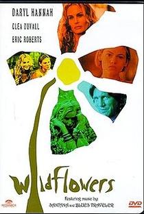 Assistir Flor Selvagem Online Grátis Dublado Legendado (Full HD, 720p, 1080p)   Melissa Painter   1999