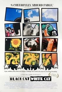 Assistir Gata Preta, Gato Branco Online Grátis Dublado Legendado (Full HD, 720p, 1080p)   Emir Kusturica   1998