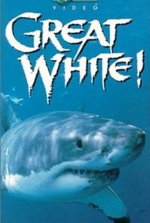 Assistir Great White Online Grátis Dublado Legendado (Full HD, 720p, 1080p)   Zac Reeder   1998