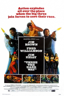 Assistir Implacáveis Até o Inferno Online Grátis Dublado Legendado (Full HD, 720p, 1080p) | Gordon Parks Jr. | 1974
