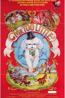 Assistir Mr. Too Little Online Grátis Dublado Legendado (Full HD, 720p, 1080p) | Stuart E. McGowan | 1978