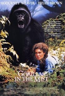 Assistir Nas Montanhas dos Gorilas Online Grátis Dublado Legendado (Full HD, 720p, 1080p) | Michael Apted | 1988
