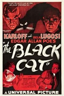 Assistir O Gato Preto Online Grátis Dublado Legendado (Full HD, 720p, 1080p) | Edgar G. Ulmer | 1934