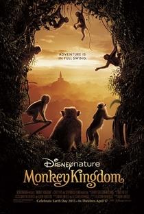 Assistir O Reino dos Primatas Online Grátis Dublado Legendado (Full HD, 720p, 1080p)   Alastair Fothergill