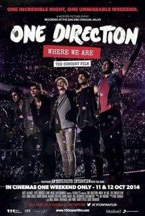 Assistir One Direction: Where We Are - The Concert Film Online Grátis Dublado Legendado (Full HD, 720p, 1080p) | Paul Dugdale | 2014
