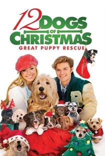 Assistir Os 12 Cães de Natal: O Grande Resgate Online Grátis Dublado Legendado (Full HD, 720p, 1080p) | Kieth Merrill | 2012