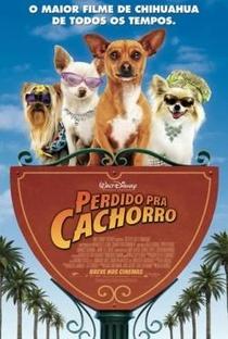 Assistir Perdido Pra Cachorro Online Grátis Dublado Legendado (Full HD, 720p, 1080p) | Raja Gosnell | 2008