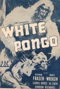 Assistir Pongo, O Gorila Branco Online Grátis Dublado Legendado (Full HD, 720p, 1080p) | Sam Newfield (I) | 1945