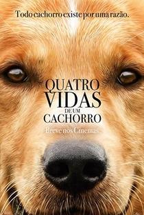 Assistir Quatro Vidas de Um Cachorro Online Grátis Dublado Legendado (Full HD, 720p, 1080p)   Lasse Hallström   2017