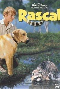 Assistir Rascal Online Grátis Dublado Legendado (Full HD, 720p, 1080p) | Norman Tokar | 1969