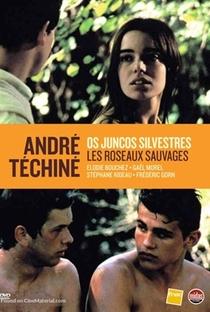 Assistir Rosas Selvagens Online Grátis Dublado Legendado (Full HD, 720p, 1080p)   André Téchiné   1994