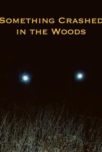 Assistir Something Crashed in the Woods Online Grátis Dublado Legendado (Full HD, 720p, 1080p) | Jeff Profitt | 2019