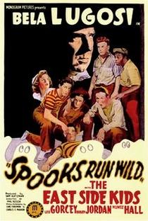 Assistir Spooks Run Wild Online Grátis Dublado Legendado (Full HD, 720p, 1080p) | Phil Rosen (I) | 1941