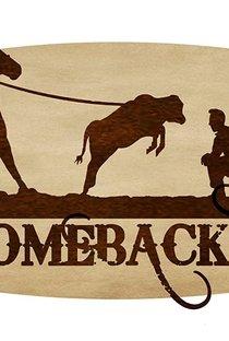 Assistir The Comeback Trail Online Grátis Dublado Legendado (Full HD, 720p, 1080p) | George Gallo (I) | 2020