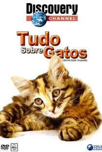 Assistir Tudo Sobre Gatos Online Grátis Dublado Legendado (Full HD, 720p, 1080p) | Karen Patridge | 2000