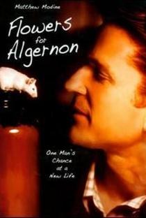 Assistir Um Amigo para Algernon Online Grátis Dublado Legendado (Full HD, 720p, 1080p) | Jeff Bleckner | 2000