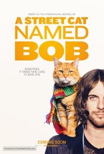 Assistir Um Gato de Rua Chamado Bob Online Grátis Dublado Legendado (Full HD, 720p, 1080p)   Roger Spottiswoode   2016