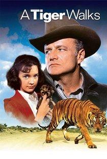 Assistir Um Tigre Caminha pela Noite Online Grátis Dublado Legendado (Full HD, 720p, 1080p) | Norman Tokar | 1964