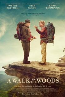 Assistir Uma Caminhada na Floresta Online Grátis Dublado Legendado (Full HD, 720p, 1080p) | Ken Kwapis | 2015