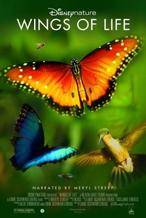Assistir Wings of Life Online Grátis Dublado Legendado (Full HD, 720p, 1080p) | Louie Schwartzberg | 2011