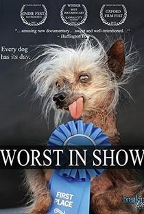 Assistir Worst in Show Online Grátis Dublado Legendado (Full HD, 720p, 1080p) | Don R. Lewis