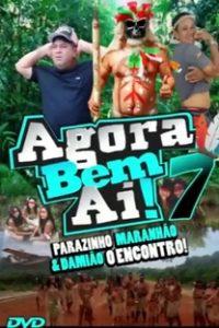 Assistir Agora Bem AÍ 7 Online Grátis Dublado Legendado (Full HD, 720p, 1080p)   Ediney Nogueira Maciel   2019