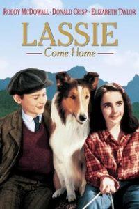 Assistir Lassie - A Força do Coração Online Grátis Dublado Legendado (Full HD, 720p, 1080p) | Fred M. Wilcox | 1943