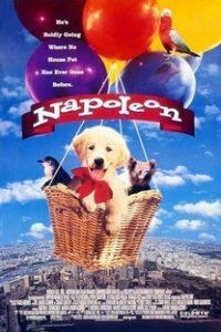 Assistir Napoleon: As Aventuras de um Cãozinho Valente Online Grátis Dublado Legendado (Full HD, 720p, 1080p) | Mario Andreacchio | 1995