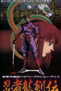 Assistir Ninja Gaiden Online Grátis Dublado Legendado (Full HD, 720p, 1080p) | Mamoru Kanbe | 1991