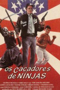 Assistir Os Caçadores de Ninjas Online Grátis Dublado Legendado (Full HD, 720p, 1080p) | Dusty Nelson