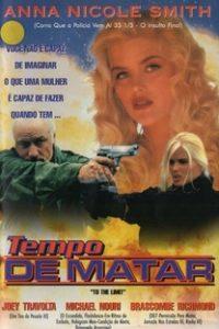 Assistir Tempo de Matar Online Grátis Dublado Legendado (Full HD, 720p, 1080p) | Raymond Martino | 1995