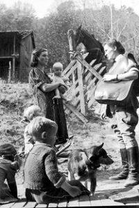 Assistir The Forgotten Frontier Online Grátis Dublado Legendado (Full HD, 720p, 1080p) | Marvin Breckinridge | 1931